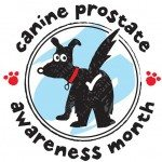 Canine Prostate Awareness Month