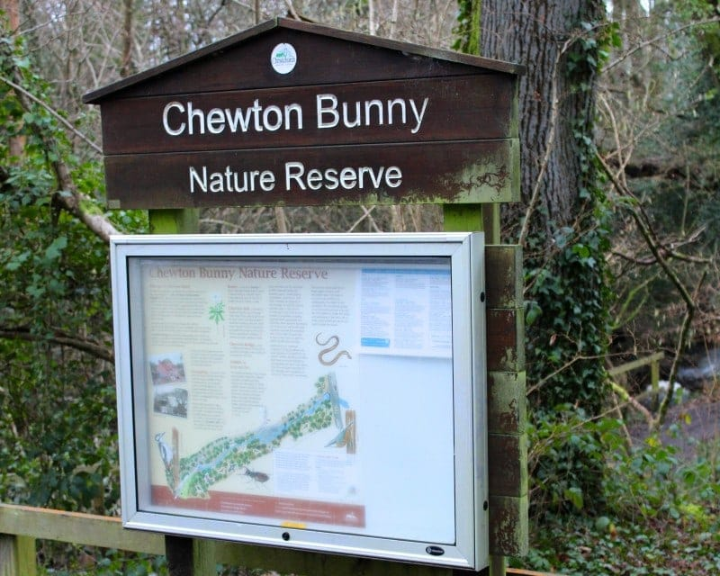 Walk: Chewton Bunny Beach, New Forest