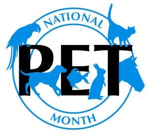 National Pet Month has started!