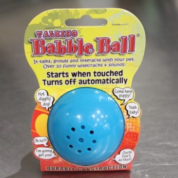 What's A Babble Ball? Fun New Ball Your Dog Will Love