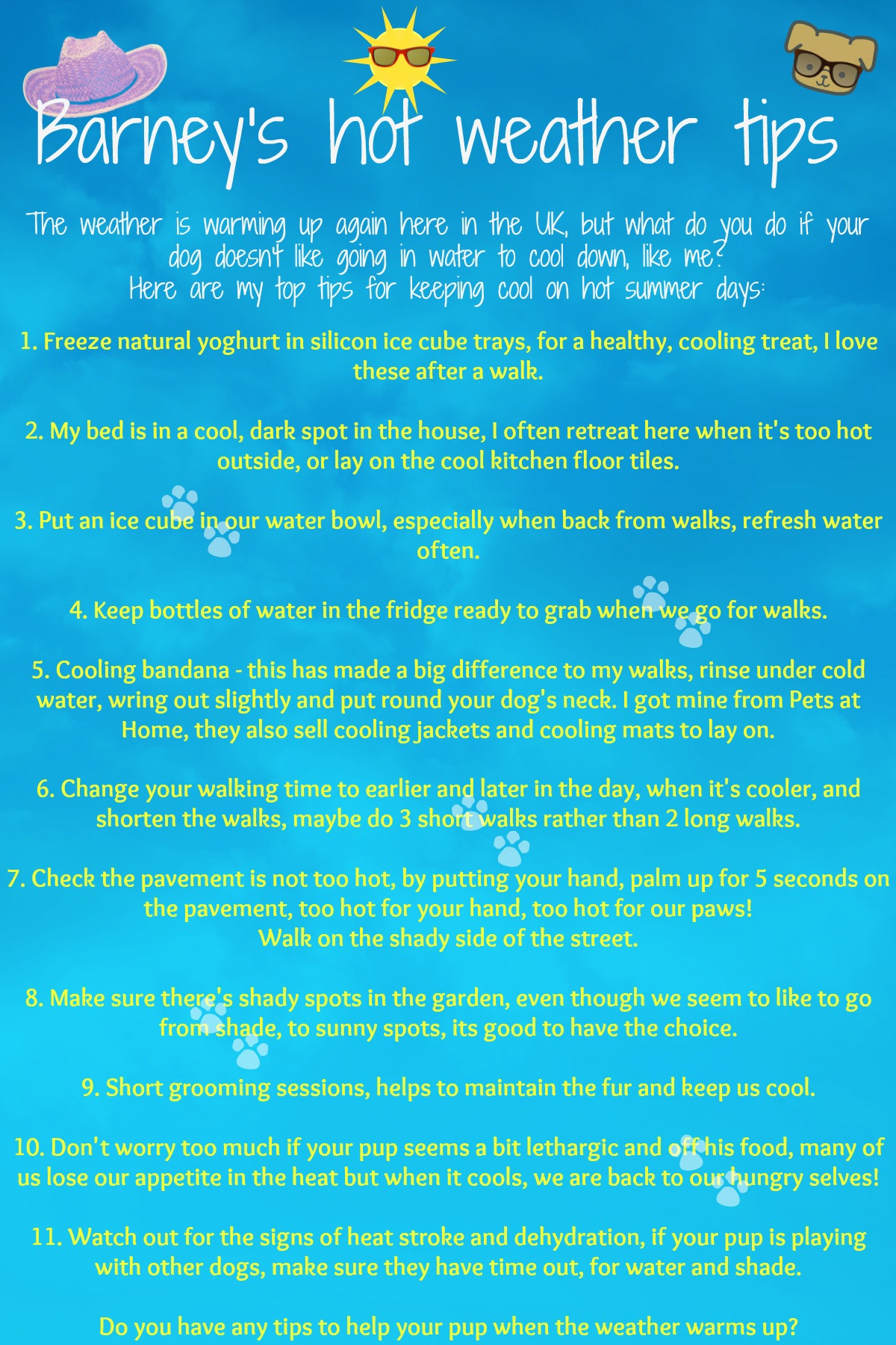 Hot Weather Tips {Summer} #hot www.scruffylittleterrier.com