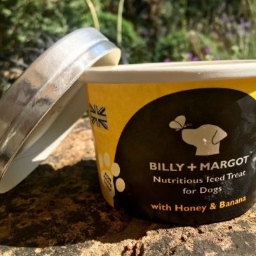 Billy + Margot Nutritious Iced Treat for Dogs
