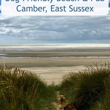 Lovely Dog-Friendly Beach & Pub in Camber, East Sussex