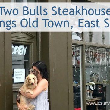Dog-Friendly Steakhouse in Hastings, East Sussex