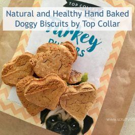Natural and Healthy Hand Baked Doggy Biscuits by Top Collar