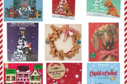 9 Christmas Advent Calendars For Dogs