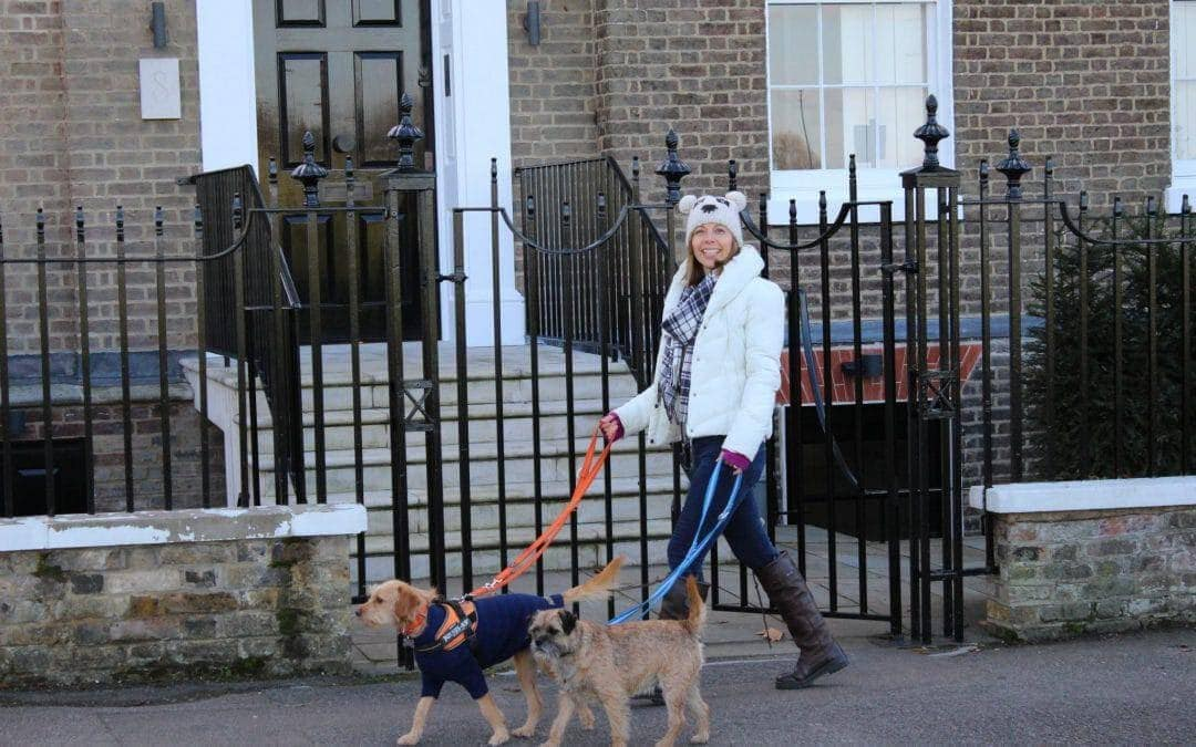 Learning To Enjoy 'Walking The Dog Day'