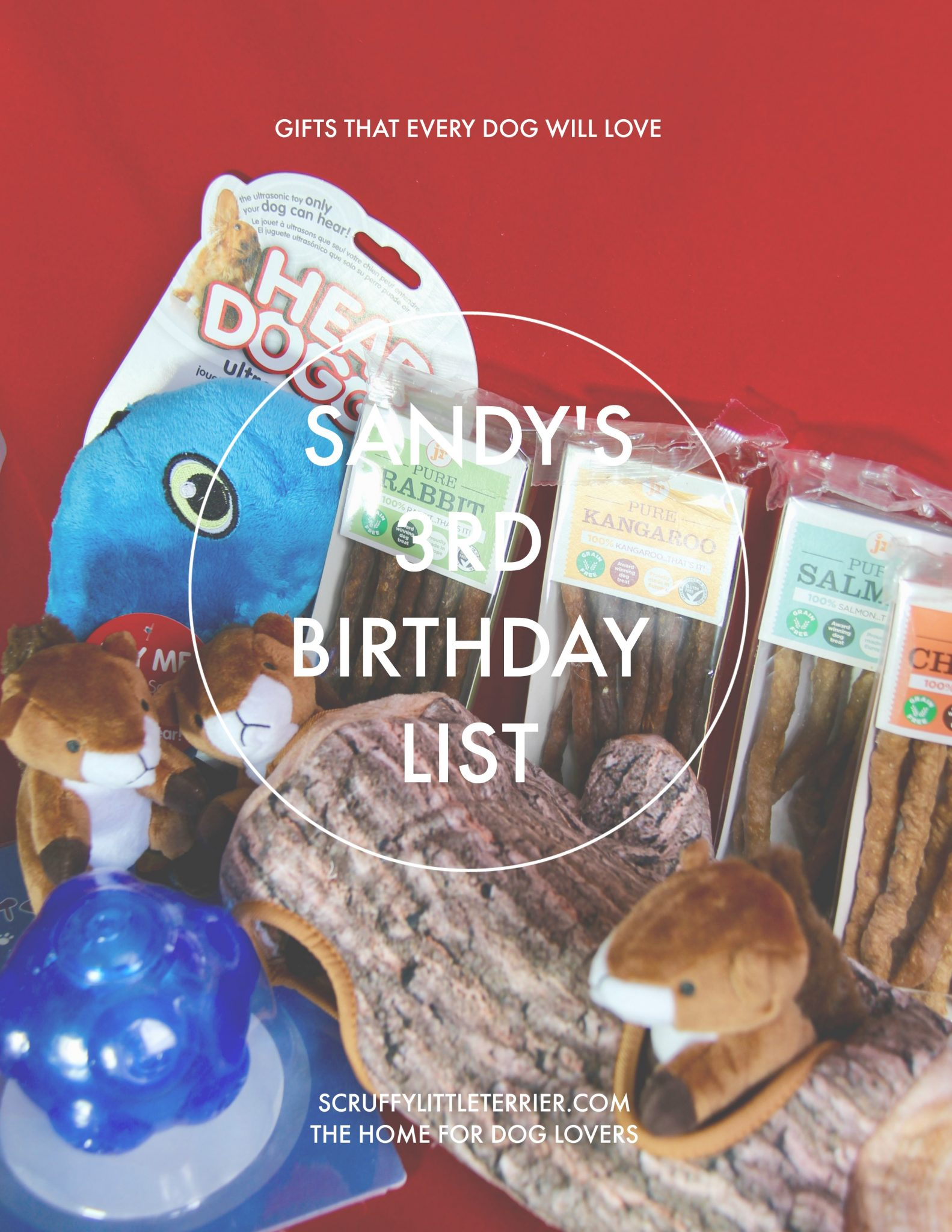 3 Sandy's 3rd Birthday List {Sandy's 3rd Birthday List} #DogBirthday #DogProductReviews #DogProducts #DogBall #DogChews #DogToys www.scruffylittleterrier.com
