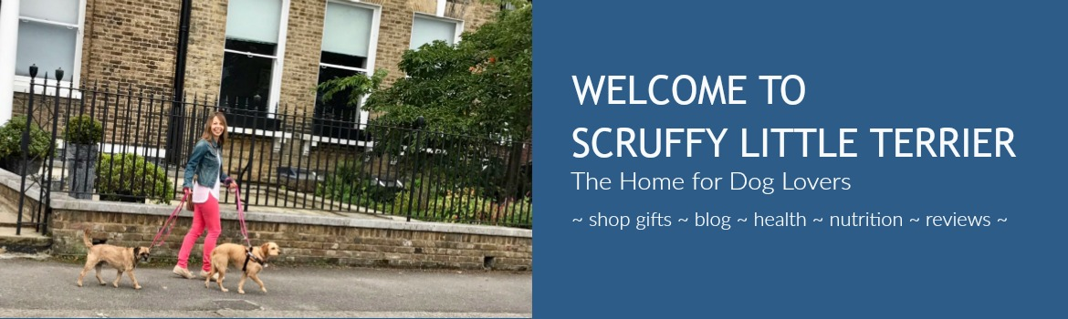 Work With Us - Scruffy Little Terrier