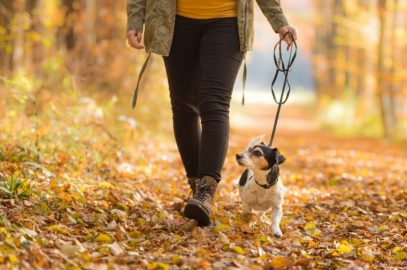 When You No Longer Enjoy Walks With Your Dog {Walks With Your Dog} #DogAnxiety #Dogs&Humans #DogWalks #DogHealth www.scruffylittleterrier.com