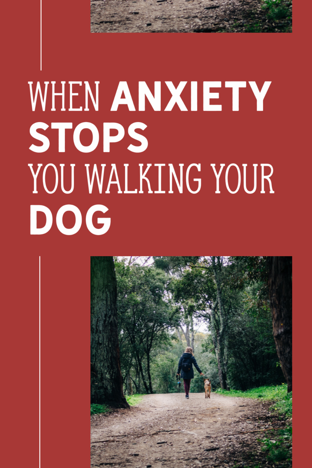 When Anxiety Stops You Walking Your Dog {Walks With Your Dog} #DogAnxiety #Anxiety #Dogs&Humans #DogWalks #DogHealth www.scruffylittleterrier.com