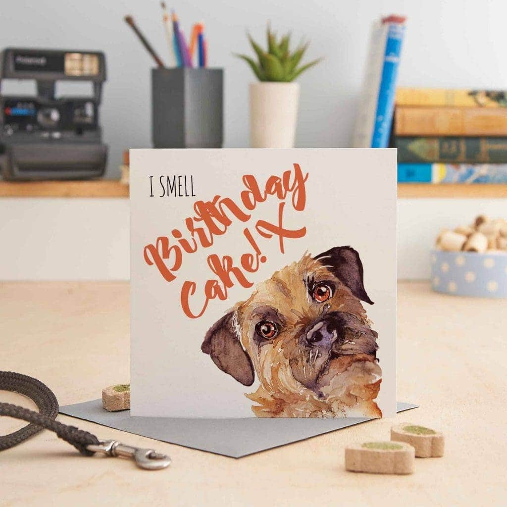 white square greeting card with a picture of a border terrier's head and text that says 'i smell birthday cake'