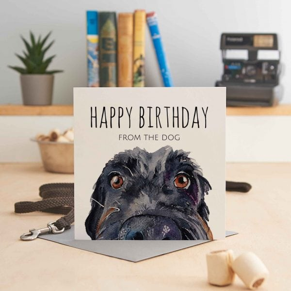 white square greeting card with a close up of a dog's head and text that says 'Happy Birthday from the dog'