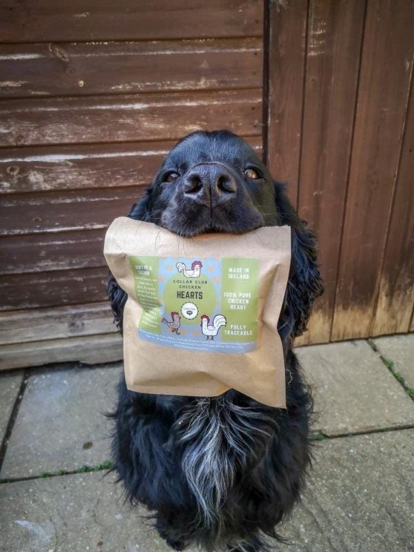 Black dog holding a packet of Collar Club Chicken Hearts