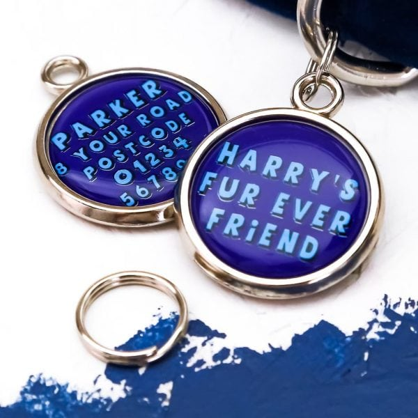 Pawsome Pet Tags Fur Ever Friend dog tag in blue