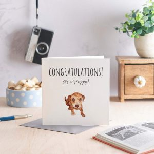 Its A Puppy! greeting card with an adorable hand drawn puppy dog and Congratulations on the front