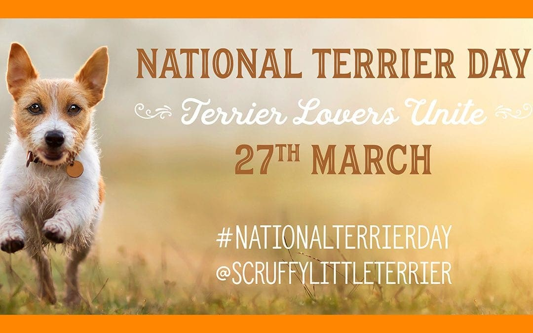 For The Love Of Terriers: National Terrier Day